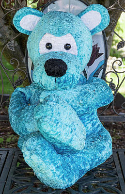 Photograph - Blue Bear by Ron Roberts