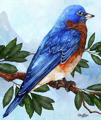 Painting - Blue Bird by Curtiss Shaffer