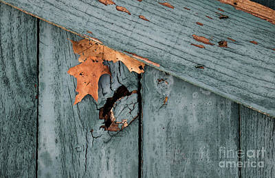 Photograph - Blue Fence by James Guilford