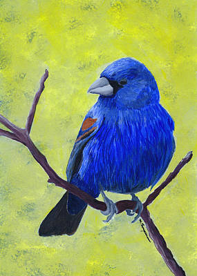 Painting - Blue Grosbeak by Mary Elizabeth Thompson