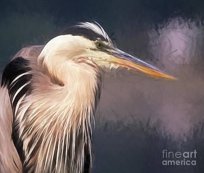 Photograph - Blue Heron - Art by Sue Harper