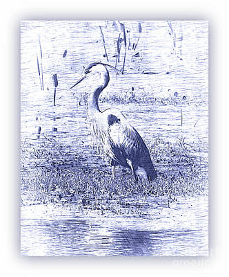 Photograph - Blue Heron In Blue Digital Art With White Border by Carol Groenen