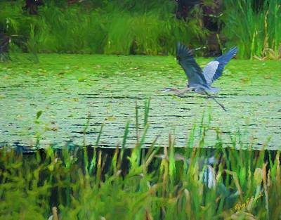 Digital Art - Blue Heron In Flight by Rusty R Smith