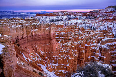 Photograph - Blue Hour In Bryce by Renee Sullivan