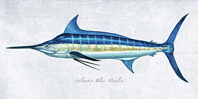 Wall Art - Painting - Blue Marlin Portrait by Guy Crittenden
