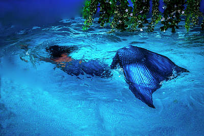 Photograph - Blue Mermaid by Garry Gay