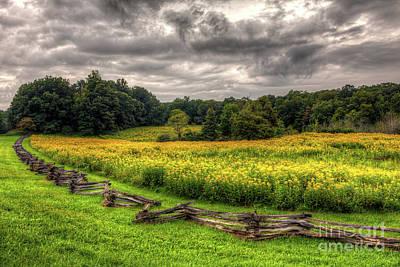 Photograph - Blue Ridge Autumn At Smartview by Dan Carmichael