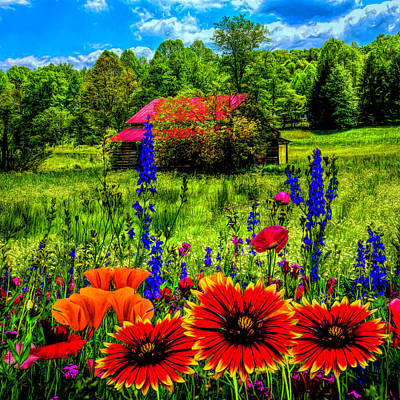Photograph - Blue Ridge Country Wildflowers Painting by Debra and Dave Vanderlaan