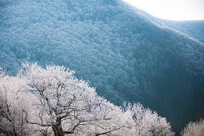 Photograph - Blue Ridge Hoarfrost by Mark Duehmig