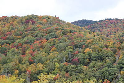 Firefighter Patents Royalty Free Images - Blue Ridge Parkway Autumn Trees Royalty-Free Image by Cathy Lindsey
