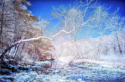 Photograph - Blue River Infrared In Bucks County by John Rizzuto