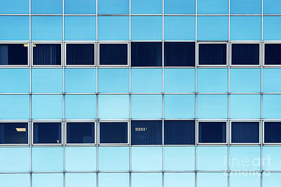 Photograph - Blue Shades by Tim Gainey