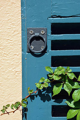 Photograph - Blue Shutter And Green Vine On Jekyll Island by Bruce Gourley
