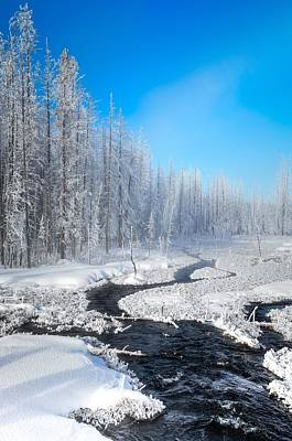 Photograph - Blue Skies Of Winter by Karen Wiles