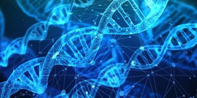 Photograph - Blue spirals of DNA by Fine Art Gallery