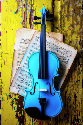 Photograph - Blue Violin On Yellow Door by Garry Gay