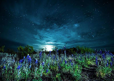 Photograph - Bluebonnet Moonrise by David Morefield