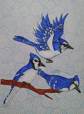 Drawing - Bluejays by Monique Montney