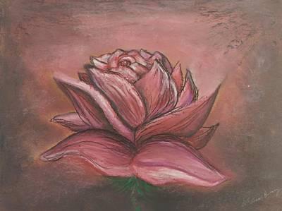 Pastel - Blush Red Rose by Lisa Bunsey