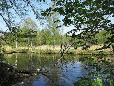 Photograph - Bogesundlandets Naturreservat by Chani Demuijlder