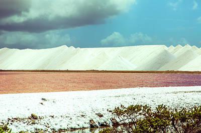 Photograph - Bonaire Salt Pond by Max Huber