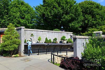 Photograph - Bonsai Garden At North Carolina Arboretum by Jill Lang