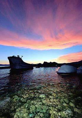 Photograph - Bonsai Twilight  by Sean Sarsfield
