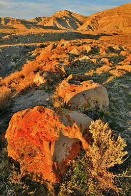 Target Threshold Nature - Book Cliff Colors at Sunset by Ray Mathis