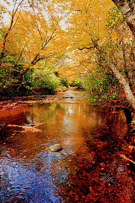 Photograph - Boone Fork Stream by Meta Gatschenberger