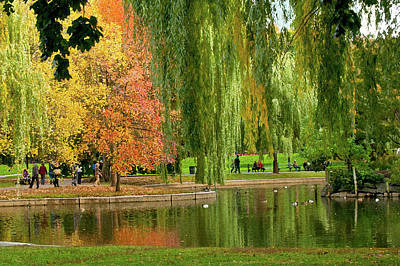 Photograph - Boston Common - Artistic View by Paul Mangold