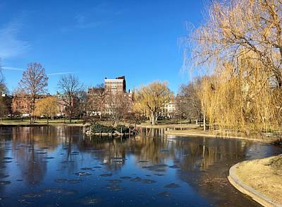 Photograph - Boston Common In Winter by Anne Sands