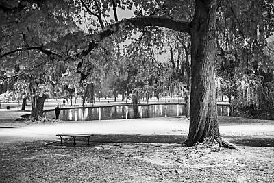 Photograph - Boston Snowfall In The Boston Public Garden Boston Ma Autumn Tree Black And White by Toby McGuire