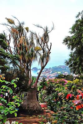 Photograph - Botanic Garden View Madeira by Dorothy Berry-Lound