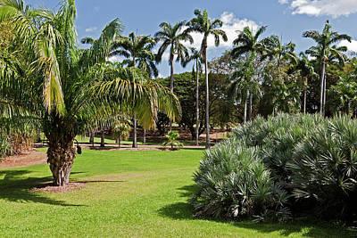 Botanical Photograph - Botanic Gardens, Darwin, Australia by Australian Scenics