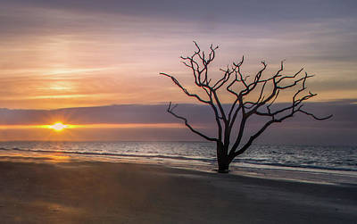 Photograph - Botany Bay Sunrise by James Woody