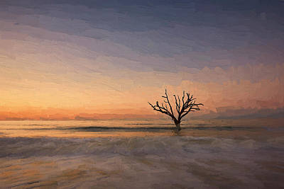 Digital Art - Botany Bay Tree V by Jon Glaser