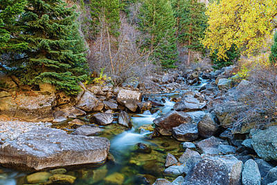 Photograph - Boulder Creek Beauty by James BO Insogna