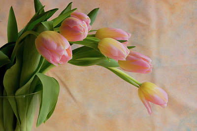 Photograph - Bouquet Of Tulips  by Jennifer Wick