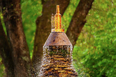 Photograph - Bourbon Bottle Water Fountain  -  Bourbonbottlewaterfountain136998 by Frank J Benz
