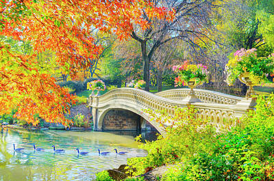 Bird Photograph - Bow Bridge, Central Park, In Autumn by Mitchell Funk