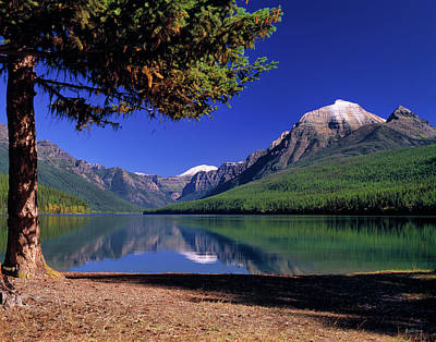 Glacier National Park Wall Art - Photograph - Bowman Lake by Leland D Howard