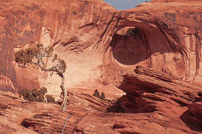 Photograph - Bowtie Arch by Jeanette Fellows
