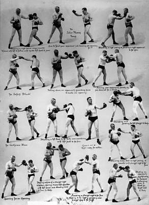 Photograph - Boxing Moves by Reinhold Thiele
