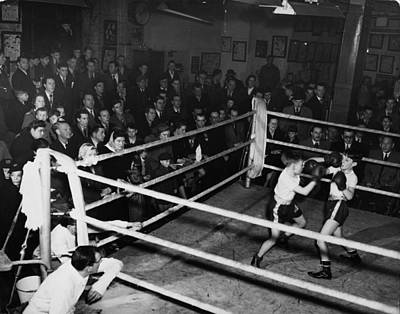 Photograph - Boxing Nursery by George Konig