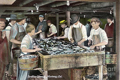 Photograph - Boys Cutting Sardine Canning, Montetey, Cal. Circa 1908 by California Views Archives Mr Pat Hathaway Archives