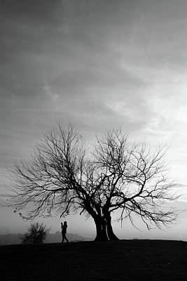 Photograph - Branches by Okan YILMAZ