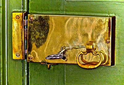 Photograph - Brassy by Don Moore