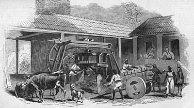 Brazilian Sugar Mill Art Print by Hulton Archive