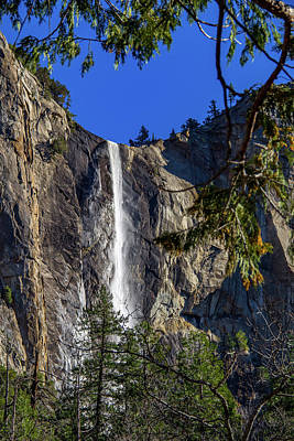 Wall Art - Photograph - Bridalveil Fall Framed By Trees by Roslyn Wilkins