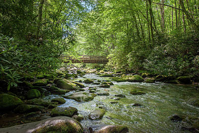 Photograph - Bridge Across Fires Creek by Mark Duehmig